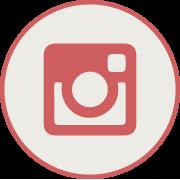 Botón instagram